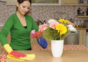 Domestic Cleaning Specialists in London UK